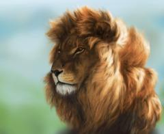 Lion libre au vent