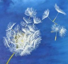 Fleur-de-Pissenlit