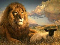 Lion et mouton