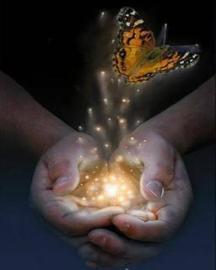 Papillon qui nous relie à l'illimité