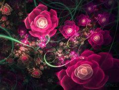 Au nom de mes roses_Flowerings_76_Love1008